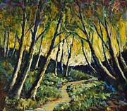 Kenny Henson - Alder Path Sunset