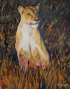 Wildcats Paintings - Alert Lioness by Caroline Street