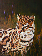 Wild Cats Paintings - Alert Ocelot by Margaret Saheed