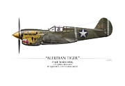 Fighters Prints - Aleutian Tiger P-40 Warhawk - White Background Print by Craig Tinder