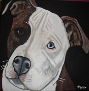 Pitbull Originals - Alex by Tammy Rekito