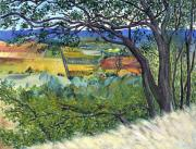 Sonoma County Painting Prints - Alexander Valley Vinyards Print by Asha Carolyn Young