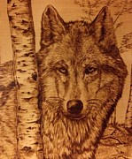 Wolves Pyrography Posters - Alfa Male Poster by Adin Begic