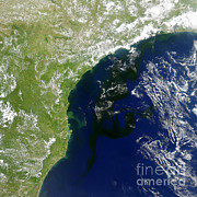 Science Source - Algal Bloom Off Brazil Coast