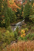 Teresa McGill - Alger Falls in the Fall...