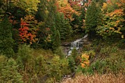 Teresa McGill - Alger Falls in the Fall