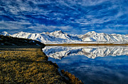 Winter Sky Prints - Alkali Pond Reflection Print by Cat Connor