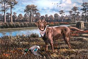 Fighting Tigers Art - All American Chocolate Lab by Mike Roberts