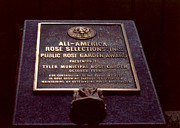 Award Photo Originals - All-American Rose Plaque by Ruth  Housley