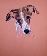 Whippet Pastels Posters - All Ears Poster by Cori Solomon