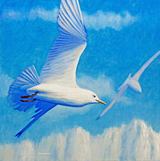 Flying Seagull Painting Framed Prints - All Fly Home Framed Print by Brian  Commerford