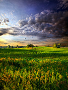 Geographic Prints - All I Need Print by Phil Koch