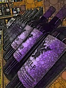 Grape Vineyards Prints - All in a Row Print by Cindy Edwards