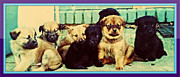 Puppies Digital Art - All in together now by Edward Pegues