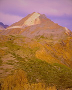 Earth-scape Prints - All-Inclusive Denali Park Print by Sandra Pena de Ortiz