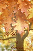 Winter Greeting Cards Posters - All the falling leaves Poster by Cathie Tyler