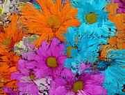 All The Flower Petals In This World 2 Print by Kume Bryant