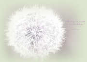 Dandelion Photos - All things are possible... by Sweet Moments Photography