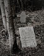 Headstones Metal Prints - All Those Days Metal Print by Odd Jeppesen