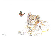Lion Drawings Originals - All Wide-Eyed by Helen Fleetwood