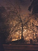 Joseph Yarbrough - Alley Light