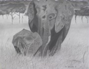Elephants Drawings - Allmother by Wil Golden