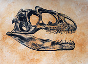 Dinosaurs Painting Prints - Allosaurus skull Print by Harm  Plat