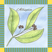Kitchen Decor Framed Prints - Allspice Illustration Framed Print by Christy Beckwith