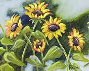Field Of Sunflowers Paintings - Alluring Sunnies  by Vic  Mastis