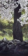 Lizzy Forrester - Almond Tree in Spring