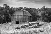 Pa Barns Prints - Almost Ready to Wrap 6802b Print by Guy Whiteley