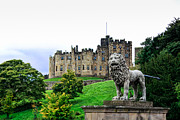 Hogwarts Castle Framed Prints - Alnwick Castle Lion Framed Print by J Pruett