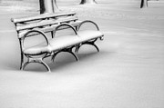 Nyc Snow Prints - Alone in the Park Print by JC Findley
