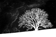 Winter Night Prints - Alone on a Hill Print by Tom Mc Nemar