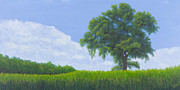 Mississippi River Painting Originals - Alone Summer by Garry McMichael