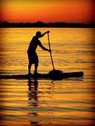 Paddles Posters - Alone With The Sun Poster by Karen Wiles