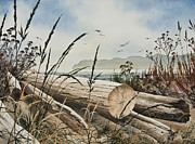 Pacific Northwest Fine Art Print Painting Originals - Along Driftwood Shores by James Williamson