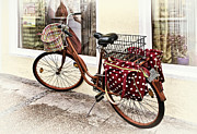 Basket Art - Along for The Ride by Marcia Colelli