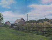 Cornfield Paintings - Along Lucknow Lane by David P Zippi