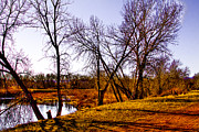 South Platte River Prints - Along the Banks of the South Platte River Print by David Patterson