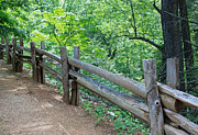 Wooden Fence Prints - Along the Blue Ridge Parkway III Print by Suzanne Gaff