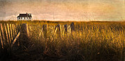 Cape Cod Scenery Prints - Along the Fence Print by Bill  Wakeley