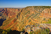 Photographic Art Prints - Along the South Rim Print by Greg Norrell