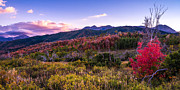 Sunset Prints - Alpine Fall Print by Chad Dutson