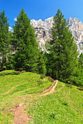 Antonio Scarpi - alpine path in Contrin...