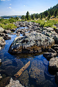 Trout Stream Landscape Prints - Alpine Stream Beartooth Mounain Range Print by Edward Fielding