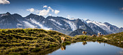 Panorama Mountain Images Prints - Alpine Vista Print by Alex Saunders