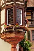 Wine Route Posters - Alsace Window Poster by Brian Jannsen