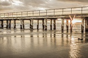Shari Mattox Art - Altona Pier in Sepia by Shari Mattox