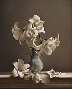 Realist Painting Posters - Amaryllis in a French Chocolate Pot Poster by Larry Preston